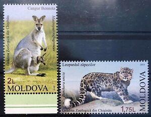 Moldawien 2013 Moldavia Satz Snow Leopard Panther Kanguru Kangaro Beuteltier Zoo