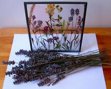 Lavender & Framed Botanical flowers, Dried Flower Frame, Pressed Flowers