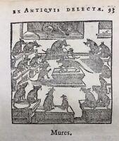 Le Conseil des Rats 1682 Fable Faerno Bruxelles Rare Gravure ancienne