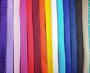 10mm  Webbing Dog Slip Show Lead Agility Training Crufts Strong Thin Light Puppy