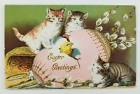 Postcard Easter Greetings Chick Cracking Egg Kittens Cats Watching Vintage