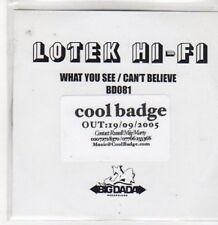 (BQ400) Lotek Hi-Fi, What You See / Can't Believe - 2005 DJ CD
