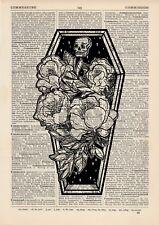 Cercueil Anatomical Roses usine Hipster Dictionnaire Art Print Vintage alternati