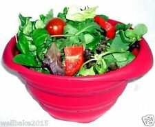 Silicone Fold Flat Collapsible Bowl.