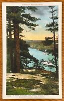 MUSKOKA LAKES CANADA A VIEW THROUGH PINES INDIAN RIVER ANDERSON'S POSTCARD A91