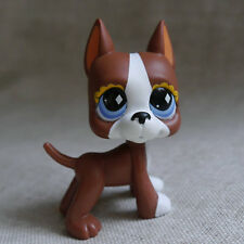 Chocolate brown Great Dane dog  # Action Figure gift  LPS mini LITTLEST PET SHOP