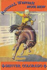 Denver National Western Rodeo Print