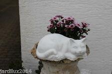 Statue chat allongé en pierre reconstituée, ton pierre blanche