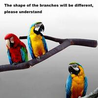 de Haustier Papagei Raw Holz Gabel Ständer Gestell Spielzeug Zweig Sitzstangen