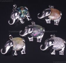 Natural Shell Elephant Chakra Healing Pendant Necklaces Charm Beads Silver Pick