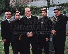 The Sopranos Paulie Silvio Tony Christopher cemetery 8x10 11x14 16x20 photo 126