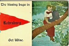 """Rohrsburg PA """"The Kissing Bugs in Rohrsburg Get Wise"""", Red Pennant Greetings"""