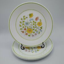 """Set of 4 Corelle Spring Meadow Luncheon Plates 8.5"""" NICE"""