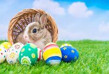 Child 5x3ft Photography Backdrops Grassland Rabbit Easter Eggs Photo Backgrounds