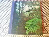 Isole BORNEO Le grandi distese selvagge - MONDADORI 1977 libro Natura Viaggi
