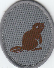 Boy Scout Badge BEAVER Tenderfoot CANADA