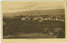 Alte Ansichtskarte Postkarte Friesenhausen s/w