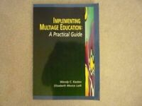 Implementing Multiage Education : A Practical Guide Paperback Wendy C. Kasten