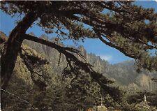 BR2806 Col de Bavella ce site grandiose est un des hauts lieux   france
