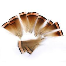 50pcs Golden Pheasant Plumage Feathers for Craft DIY Millinery Hat 6-8cm