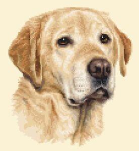 YELLOW LABRADOR RETRIEVER dog, pup Full counted cross stitch kit *Jann Designs