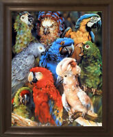 Collage Tropical Parrots Birds Animal Brown Rust Wall Decor Framed Picture 19x23
