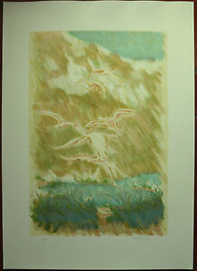 BRUNO FANESI litografia GABBIANI SULLA RUPE 1974 70x50 firmata 7/99  pubblicata