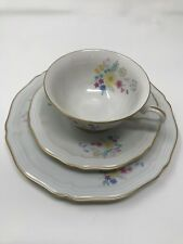 ROSENTHAL BAHNHOF SELB GERMANY CHIPPENDALE Cup, Saucer & plate   (5)