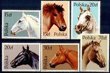 Poland 1989 Horses MNH S2609
