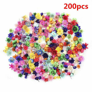 200x Real Dried Flowers For DIY Art Craft Epoxy Resin Candle Making Jewellery UK