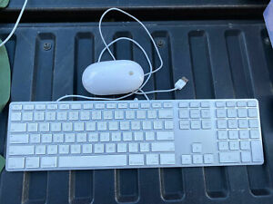 Apple Wired USB Keyboard A1243 w/Numeric Keypad and Mighty Mouse A1152 TESTED