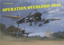 Gerald Coulson - Striking Back - Aviation Art FLYER