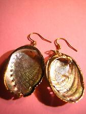 MUSCHELN Ohrringe echte Muschel Abalone Paua Perlmutt Rose Gold gefasst shell