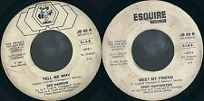 DISCO 45 GIRI     DEN HARROW / EDDY HUNTINGTON - TELL ME WHY / MEET MY FRIEND