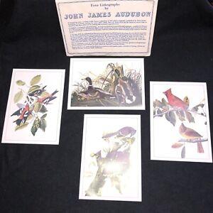 James John Audubon Set of 4 Bird Lithographs Blue Jay Mallard Cardinal5X7