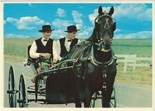 Vintage Postcard - Amish Boys in Buggy Lancaster County, Pennsylvania - VG