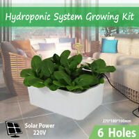 Hydroponic System Growing Kit Deep Water Culture Vegetable Plant Indoor Outdoor