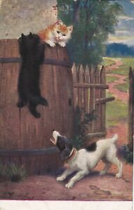 ANPC179) PC Kittens climbing a fence to escape a barking dog, used