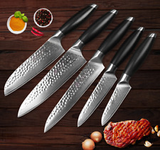 Damascus Steel Knife Set 67 Layers Blade Chef Utility Santoku Cleaver Boning Cut