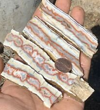 650ct Banded Orange Electric Scenic Seam Plume Agate Slabs 100% Natural Nevada