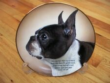 Danbury Mint Boston Terrier Adoring Eyes Limited Edition Plate + COA