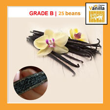 "50 Bourbon Vanilla beans/Pods grade B - Extract Quality (4""-5"") Inchers"