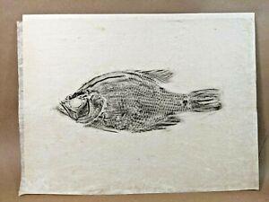 Gyotaku Original Fish Print On Rice Paper
