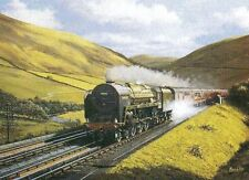 dillicar agua artesas Britannia Class Loco 70052 Firth of Tay Tren de Vapor