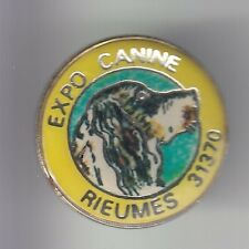 RARE PINS PIN'S .. ANIMAL CHIEN DOG CHASSE SETTER EXPO CANINE RIEUMES 31 ~DF