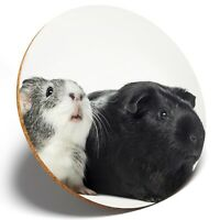 1 x Two Adorable Guinea Pigs - Round Coaster Kitchen Student Kids Gift #8124