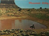 Vtg Postcard Mitten Rock Navajo Sheep Herd at Waterhole Unposted