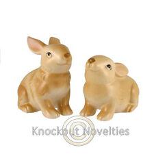 Bunny Salt Pepper Set Ceramic Shakers Shake Dinning Table Rabbit Beatrix Potter