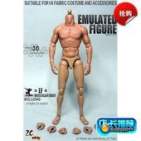 "1/6 Scale ZC Toys 12"" Muscular Figure 2.0 Body Hot Toys TTM19 Body"