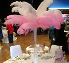 10/20/50Pcs 6-24Inch Natural Ostrich Feathers Wedding Party Decor Multiple Color